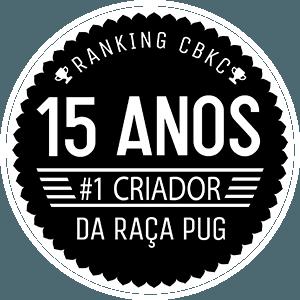 15-anos-anjos-pugs
